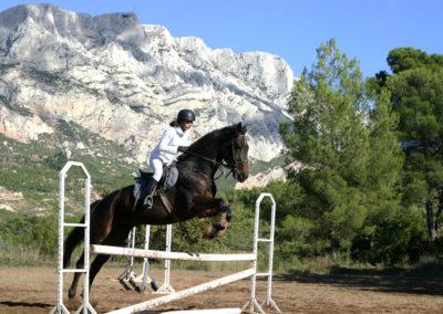 stage equitation enfants ados beeaurecueil